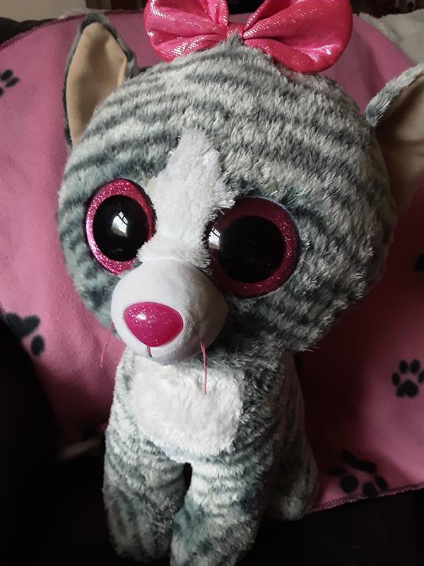 Evvy Ní Bhroin - The Saddest Kitten.jpg