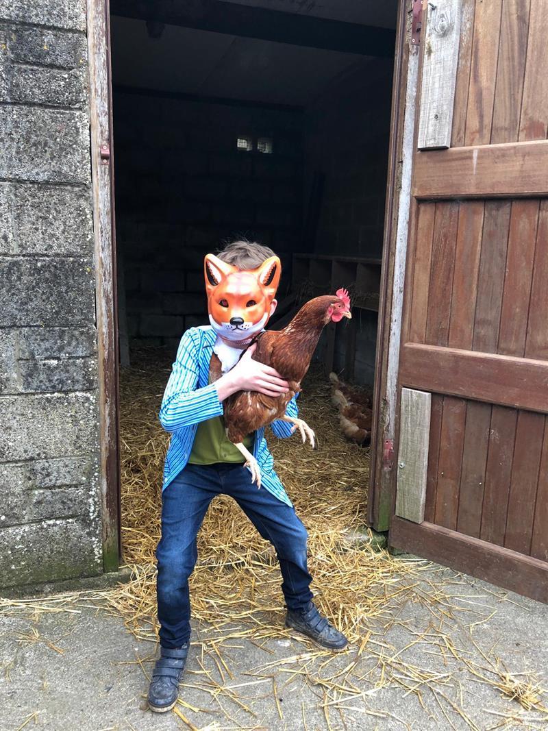 Nathan Ó Diomasaigh - Fantastic Mr. Fox.jpg